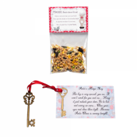 Magic Reindeer Food & Santa Key - Christmas Eve Box Filler